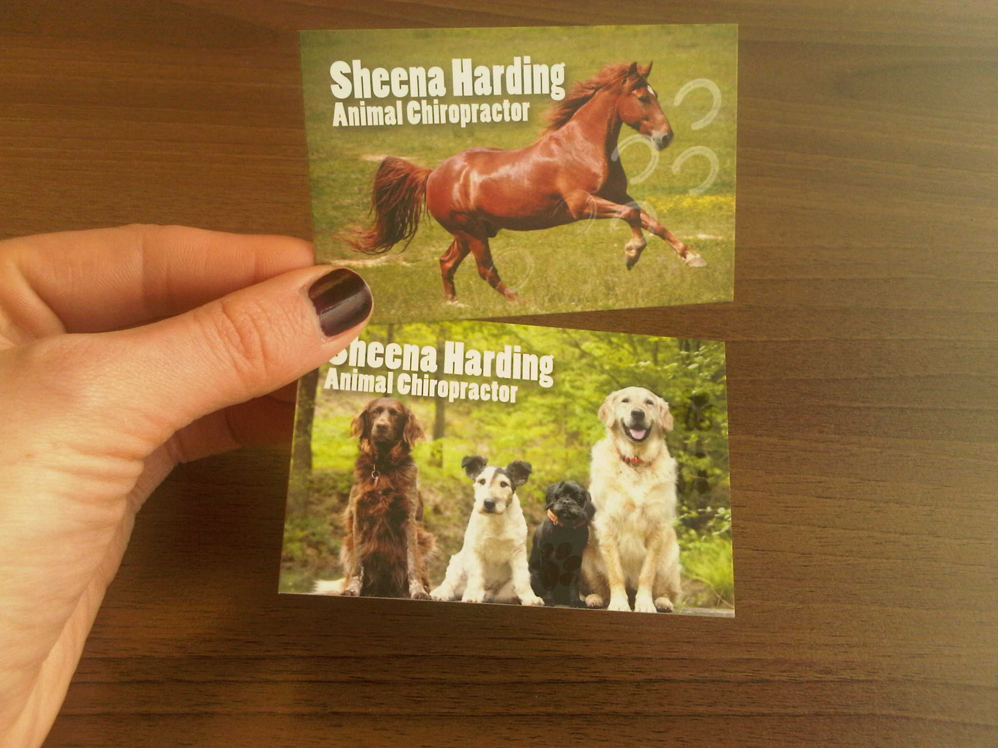 New in this week... business cards for an animal Chiropractor ...