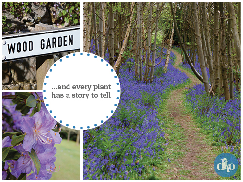 Riverhill Himalayan Gardens, Sevenoaks, Rogers family, garden