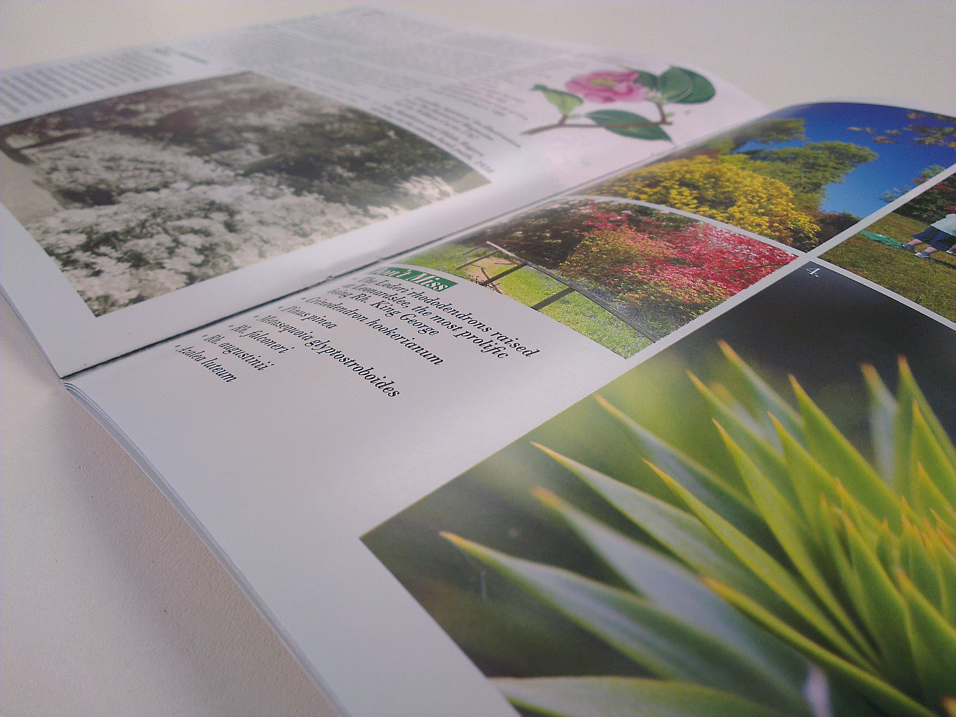 riverhill gardens guide book design, sevenoaks