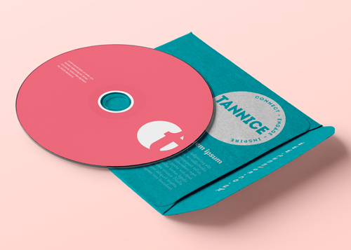 Tannice - disk and wallet. Brand identity, logo design and brand styling by Ditto Creative, Kent