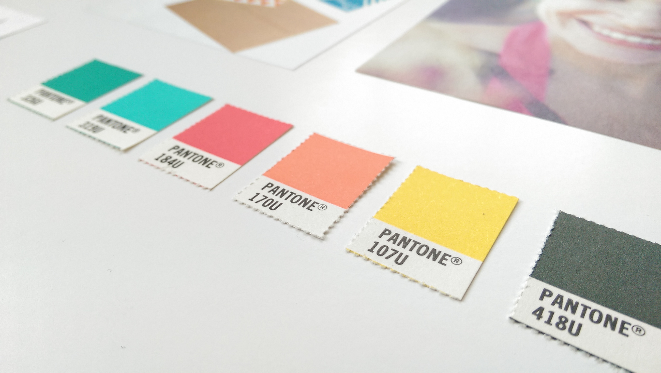 Tannice brand identity colour palette