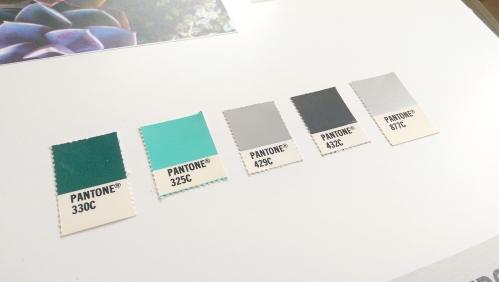 Stuart McMahon Garden Design colour palette by Ditto Creative