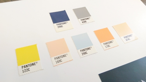 Nora Nugent Aesthetic surgeon Colour Palette
